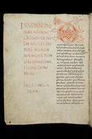 St. Gallen, Stiftsbibliothek, Codex 211
