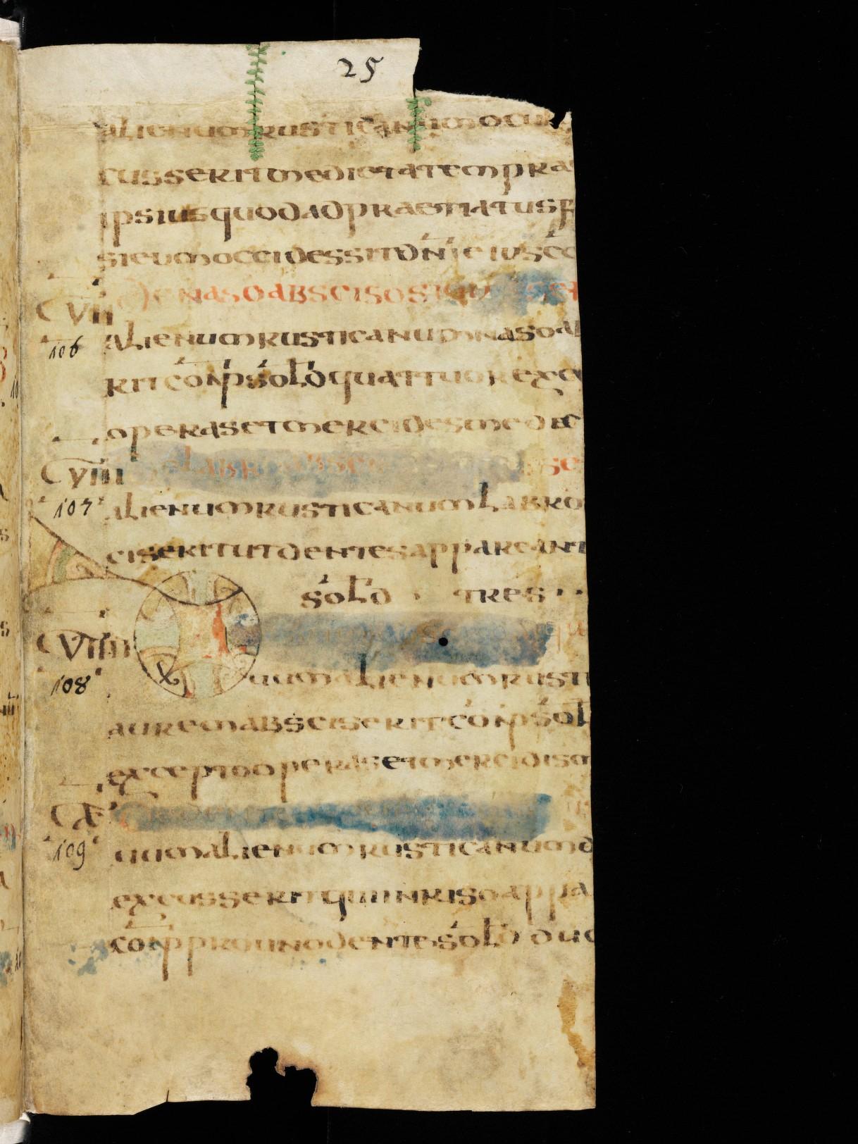 Cod. Sang. 730, p. 25