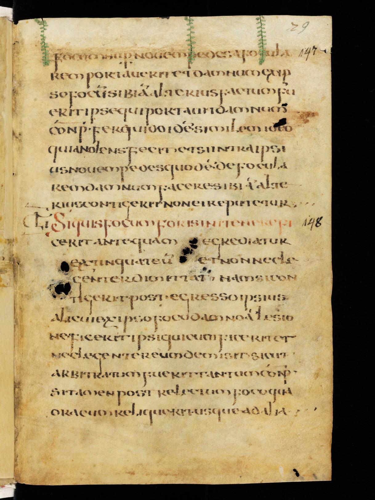 Cod. Sang. 730, p. 29