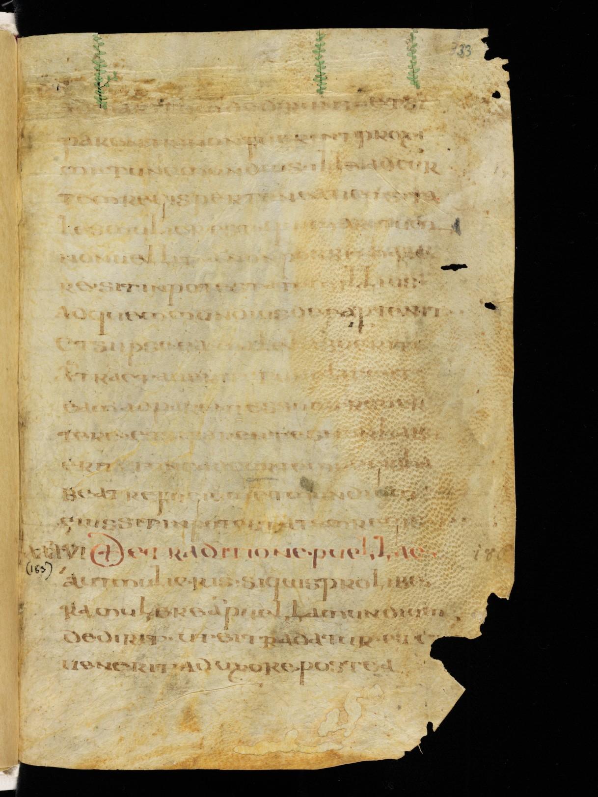 Cod. Sang. 730, p. 33