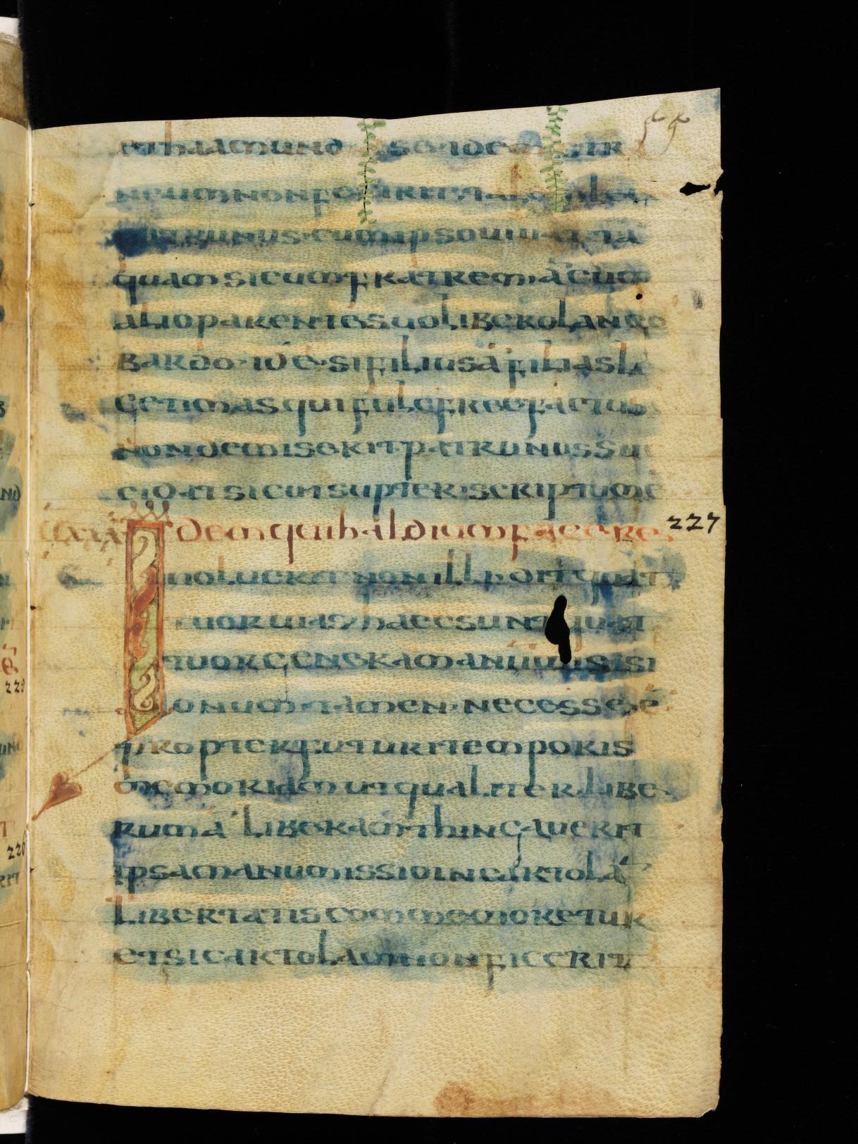Cod. Sang. 730, p.55