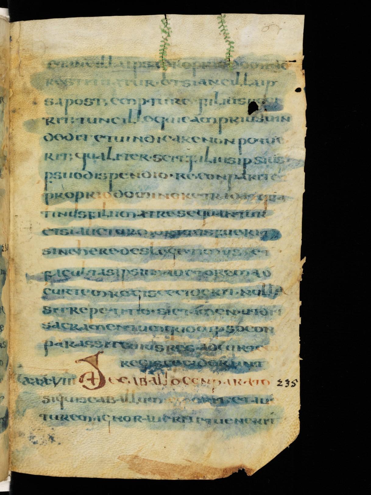 Cod. Sang. 730, p. 61