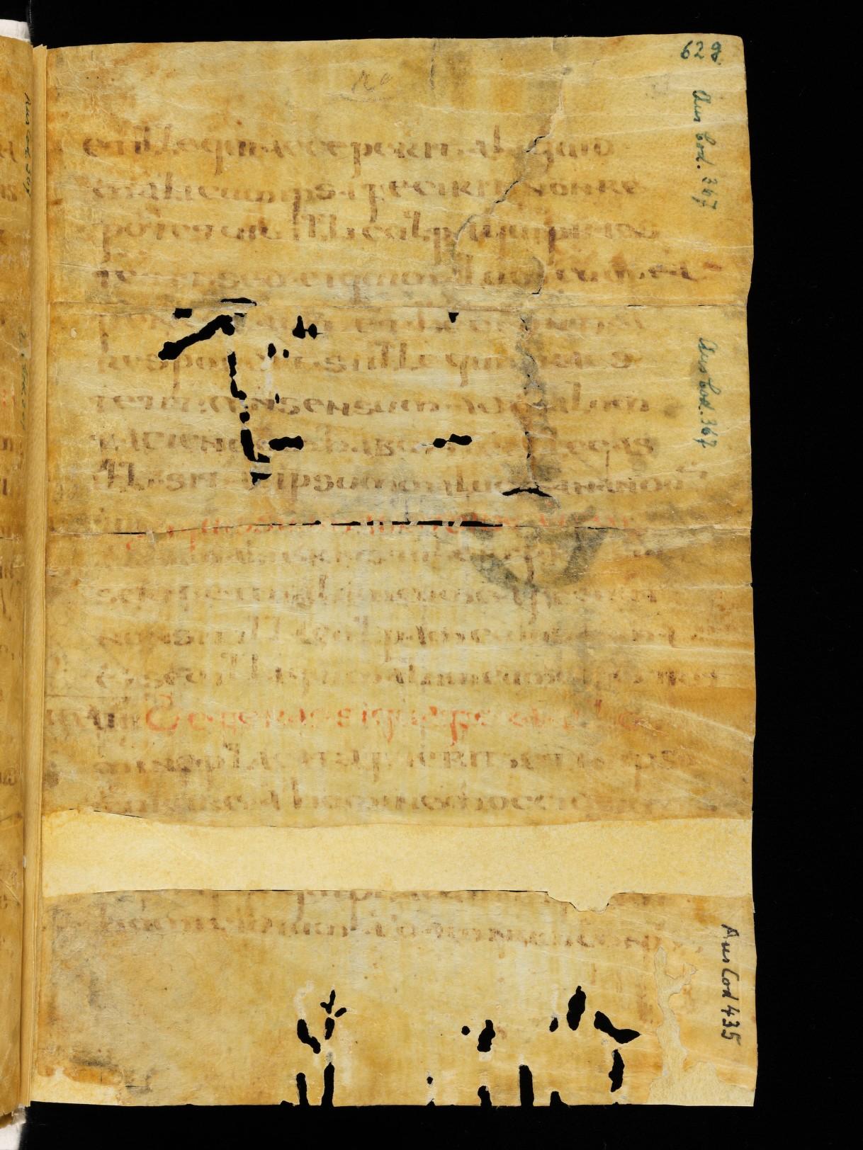 Cod. Sang. 730, p. 62g