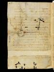 Cod. Sang. 730, p. 62h