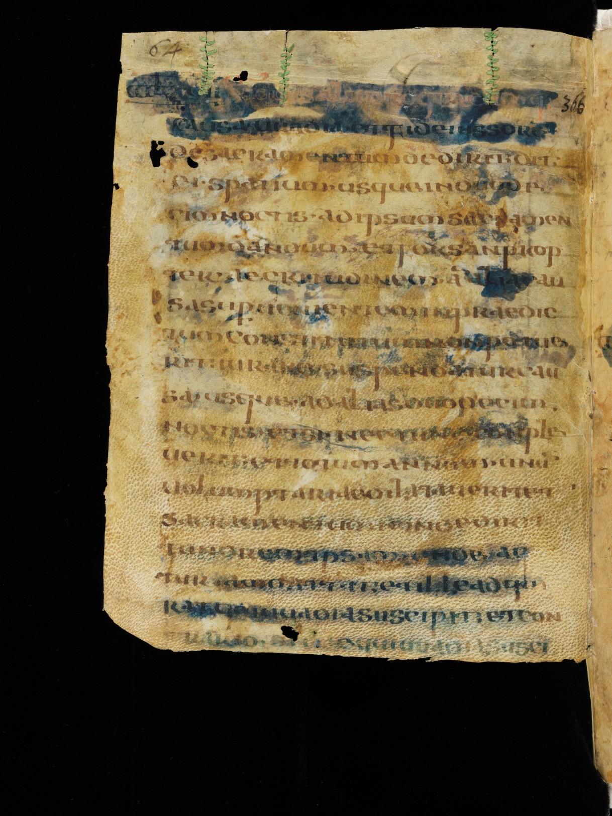 Cod. Sang. 730, p. 64