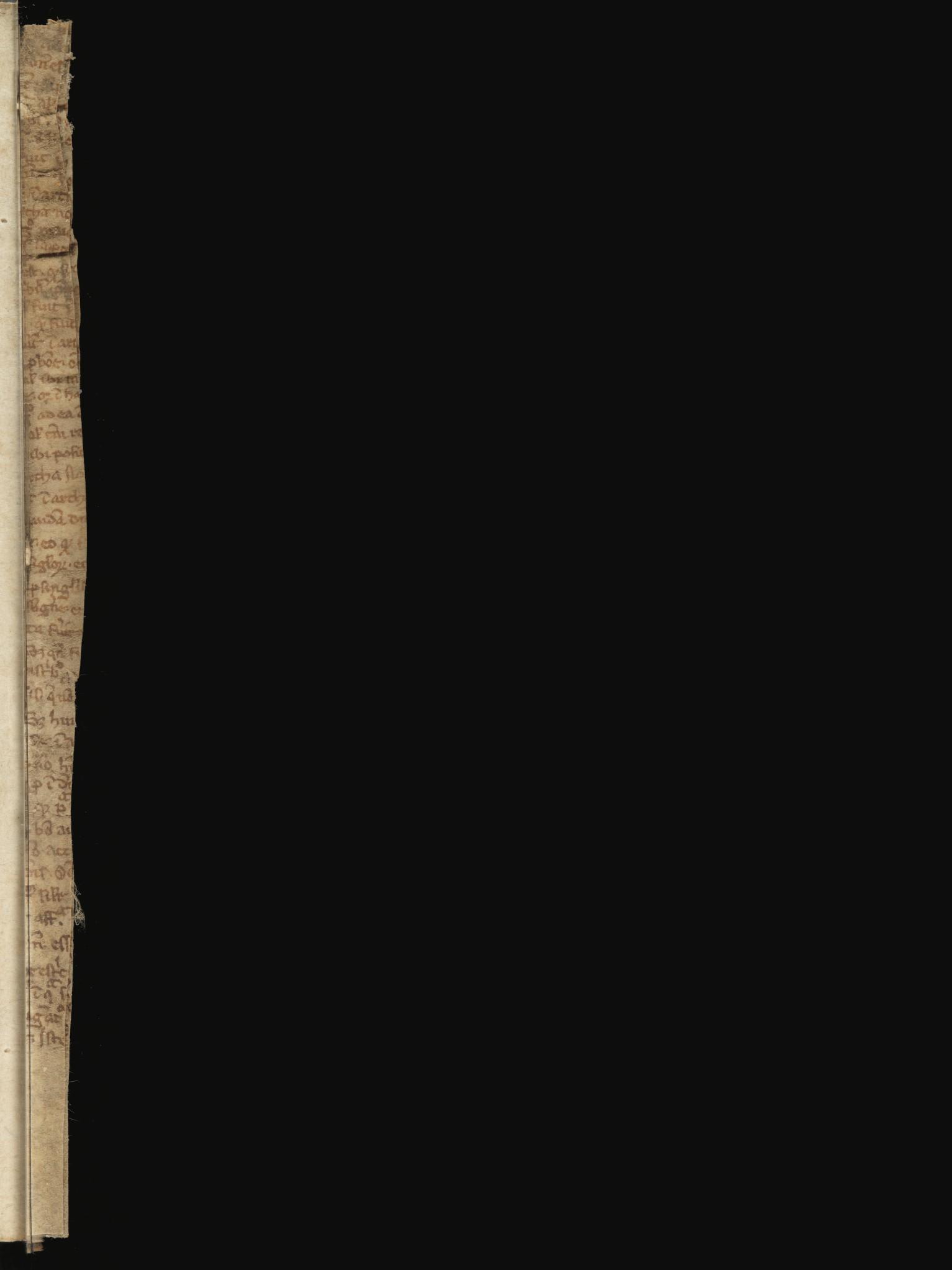 121v-s001