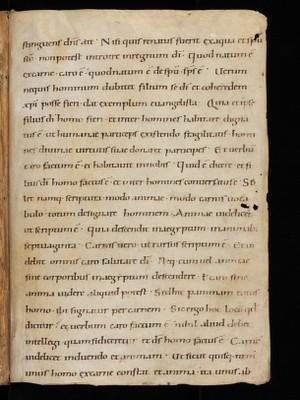 Cod. Fab. XII, Iv